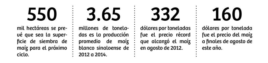 cifras_maiz