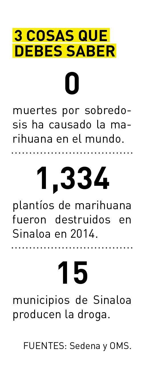 Marihuana_3Cosas