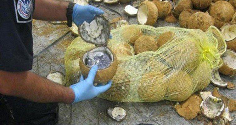 mariguana en cocos 2
